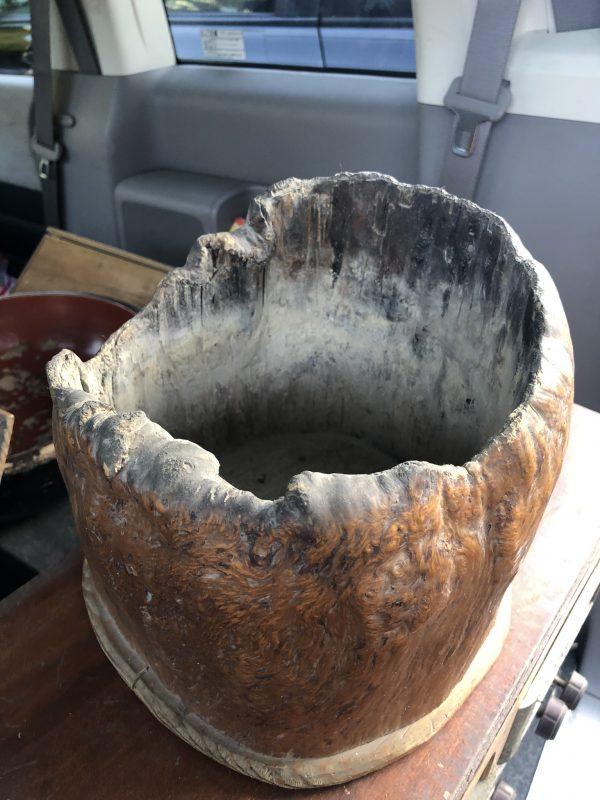 木の根株のくり抜き火鉢